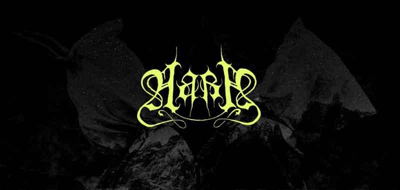 Новый альбом AARA в конце марта